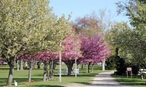 Riverview Beach Park Walkway